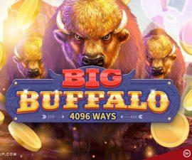 Skywind Big Buffalo slot